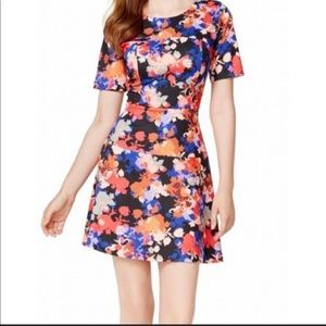 CeCe by Cynthia Steffe Garden Oasis Floral Dress